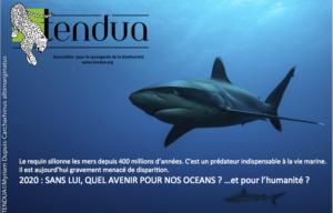 TENDUA-requins-2020