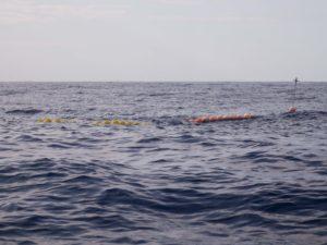 Dispositif de Concentration de Poissons à moins de 4 MN de la côte balnéaire, la Réunion